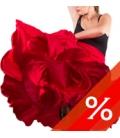 Ballo Flamenco